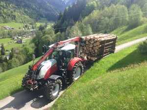 Holztransport_0243